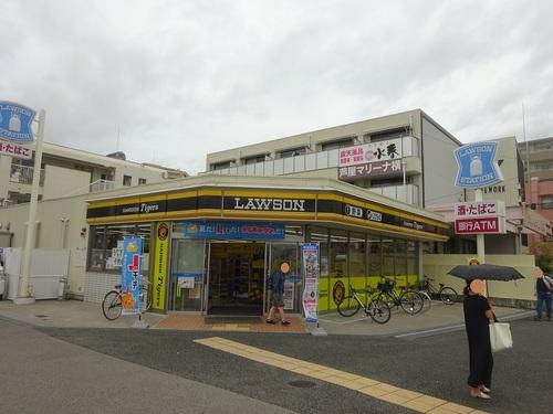 01lowson.JPG