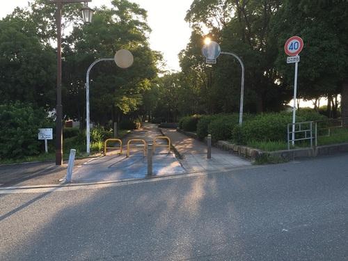 09大野川緑陰道路公園西入口.JPG