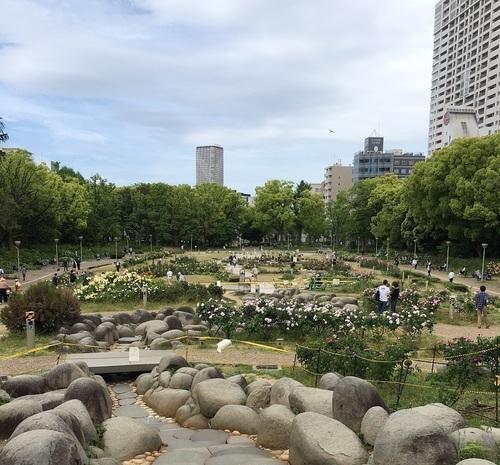 10うつぼ公園.JPG