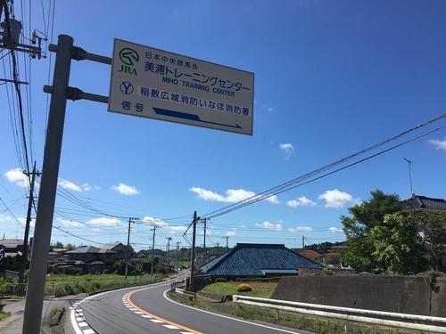 11トレセン入口.JPG