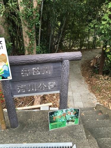 12河川公園.JPG