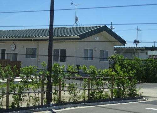 33藤沢厩舎.JPG