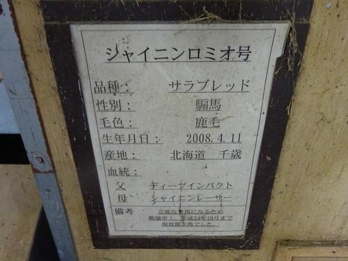 35シャイニンロミオ.JPG