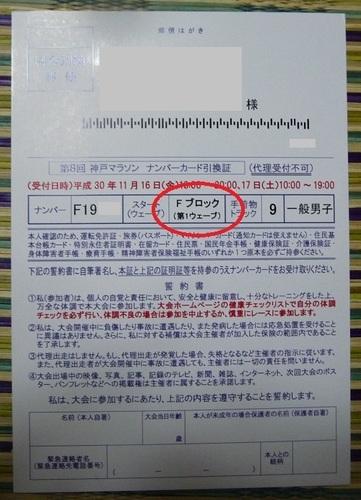 P1060819.JPG